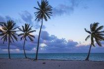 Vista de la playa de Cap Cana en Punta Cana - foto de stock