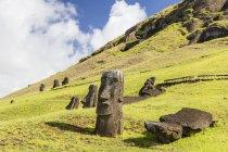 Moai sculptures at Rano Raraku — Stock Photo