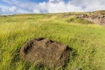 Fallen moai head — Stock Photo