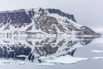 Alkefjellet à Kapp Fanshawe — Photo de stock