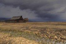 Feuilles de l'automne et le fossé de drainage — Photo de stock