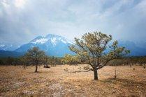 Yunnan landscape with Jade Dragon Snow Mountain — Stock Photo