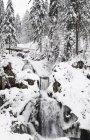 Triberg Waterfalls in winter — Stock Photo
