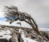 Twistleton Narbe Ende im Schnee — Stockfoto