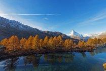 Grindjisee гірського озера восени — стокове фото
