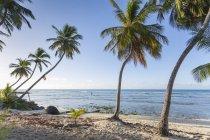 Vista de la playa de sabana de - foto de stock