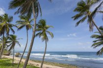 Вид на пляж Батшеба — стоковое фото