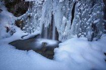Detalles de cascada rodeado de hielo y nieve - foto de stock