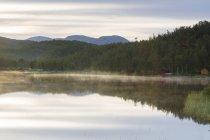 Woods sont reflètent dans les eaux calmes — Photo de stock