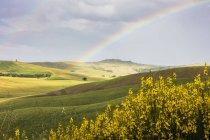 Regenbogen Rahmen grünen Hügeln der Crete Senesi — Stockfoto