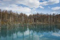 Синій ставок на Daisetsuzan Національний парк — стокове фото