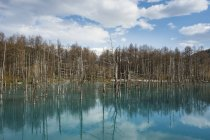 Blue Pond at Daisetsuzan National Park — Stock Photo