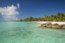 Пальми бахромою пляж з білим піском — стокове фото