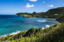 Coastline of St. Barth, Lesser Antilles — Stock Photo
