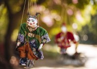 Traditional puppets hanging from tree — Stock Photo