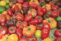 Tomatoes in the market, Cours Saleya — Stock Photo