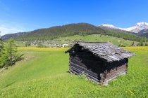 Cabana alpina em prados verdes — Fotografia de Stock