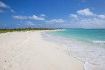 Sirena песчаного пляжа — стоковое фото