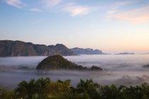 Valle di Vinales in nebbia — Foto stock