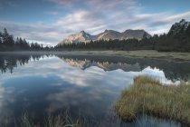 Озеро Entova на світанку — стокове фото