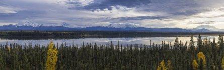 Гори і ліси краєвид — стокове фото