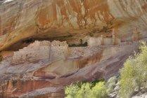 Anasazi Ruins and Monarch Cave — Stock Photo
