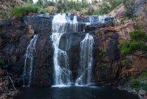 Маккензі потрапляє в Національний парк Гремпіанс — стокове фото