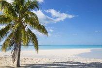 Пляж на сокровище Кей — стоковое фото