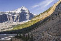 Mujer de senderismo en el Parque Provincial de Mount Robson, Rocosas canadienses, Columbia Británica, Canadá - foto de stock