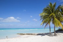 Spiaggia a Treasure Cay — Foto stock
