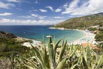 Turquoise sea and Cavoli Beach — Stock Photo