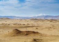 Пески на Национальный заповедник Паракас — стоковое фото