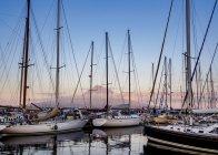 Яхт у Horta — стокове фото
