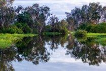 Lake at Kakadu National Park — Stock Photo