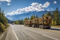Holz beladen Freightliner auf Autobahn — Stockfoto