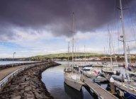 Port in Praia da Vitoria — стокове фото