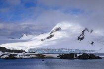 Turistas de expedición en la isla media luna en el día soleado, las regiones polares de Islas Shetland del sur, Antártida, - foto de stock