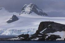 Half Moon Island und Livingston Island Berg mit Gletscher in Wolken, Süd-Shetland-Inseln, Antarktis, Polarregionen — Stockfoto