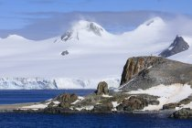 Fernen Pinguine auf Half Moon Island, Livingston Insel im Nebel, Süd-Shetland-Inseln, Antarktis, Polarregionen — Stockfoto