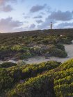 Coastal plants and Cape Du Couedic lighthouse in Flinders Chase National Park, Kangaroo Island, South Australia, Australia — Stock Photo