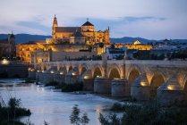 Illuminated Cathedral and Great Mosque of Cordoba and Roman Bridge at twilight, Cordoba, Andalucia, Spain — Stock Photo