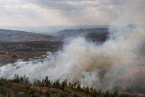 Brûlis de feu de forêt, Antsirabe, Madagascar, région de Vakinankaratra, Afrique — Photo de stock