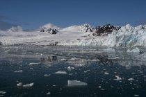 Lilliehook Glacier, Spitsbergen, Svalbard Islands, Arctique, Norvège, Europe — Photo de stock
