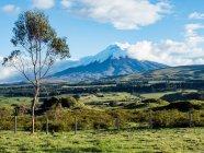 Green farmland and snow covered Cotopaxi volcano, Andes mountains, Ecuador, South America — Photo de stock