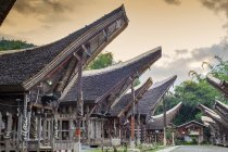 Village rizien avec les maisons longues traditionnelles de Torajan Tongkonan, Tana Toraja, Sulawesi, Indonésie, Asie du Sud-Est, Asie — Photo de stock