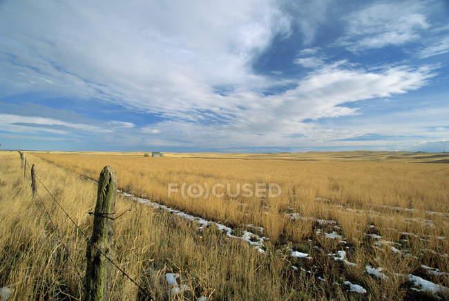 Спостерігаючи вид пейзаж прерії — стокове фото