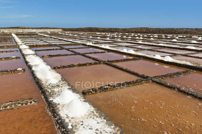 Sal cacerolas, Islas Canarias, España - foto de stock