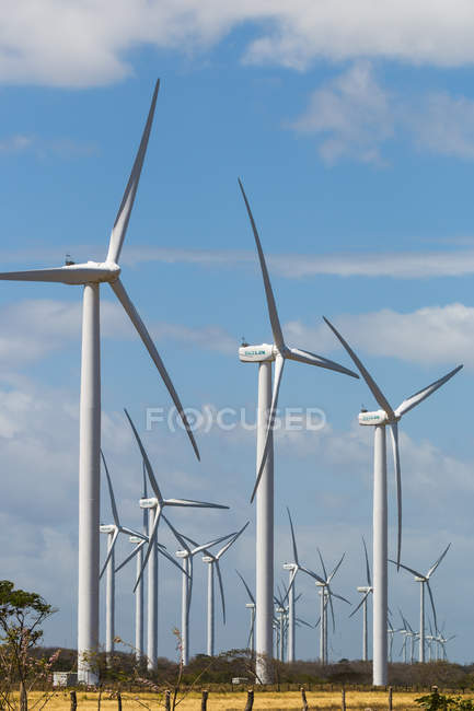 Вітрові турбіни за озера Нікарагуа — стокове фото