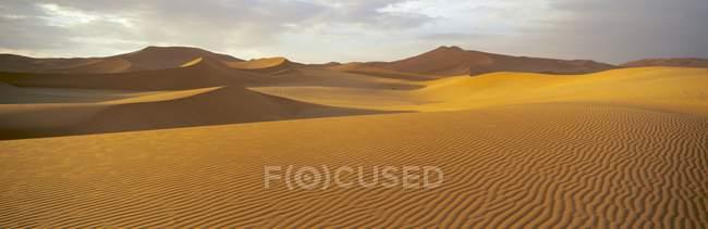 Панорамный вид на песчаные дюны — стоковое фото