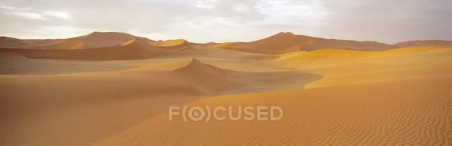 Sanddünen und Düne Meer — Stockfoto